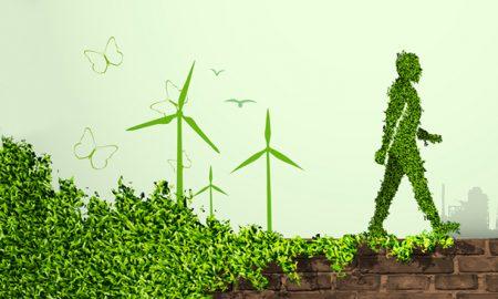 yenilenebilir enerji, yenilenebilir enerji dünya